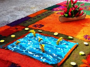 carpet with dolphins